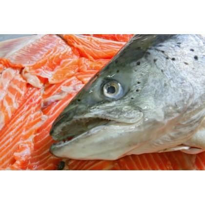 Salmon Head 三文鱼头 【Half 半边】